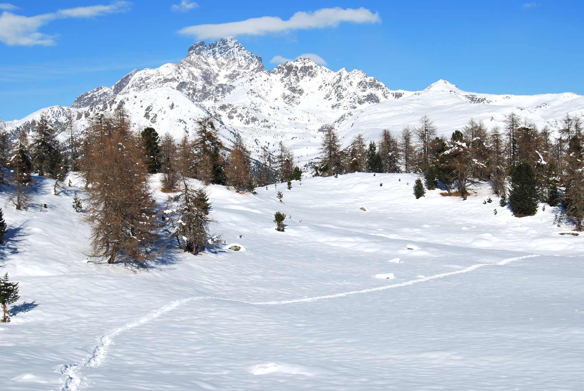 sci-alpinismo-SAmpeyre-e-valle-Varaita-18