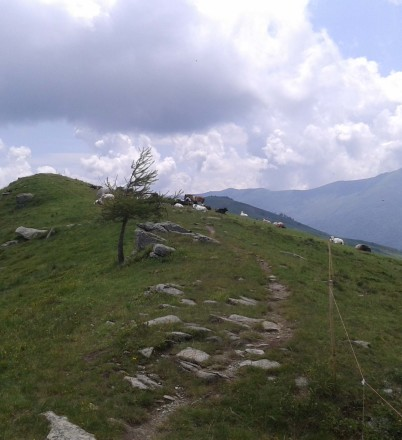 20130704_130642MelleFrassino-Monte Ricordone