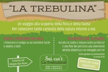 La Trebulina, percorso didattico nel bosco