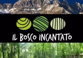 Concerto Band Aigotti – Bosco Incantato