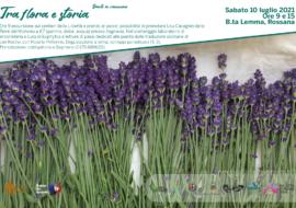 Dante nelle Terre del Monviso -tra flora e storia