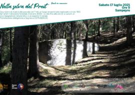 Dante nelle Terre del Monviso…nella selva del Preit