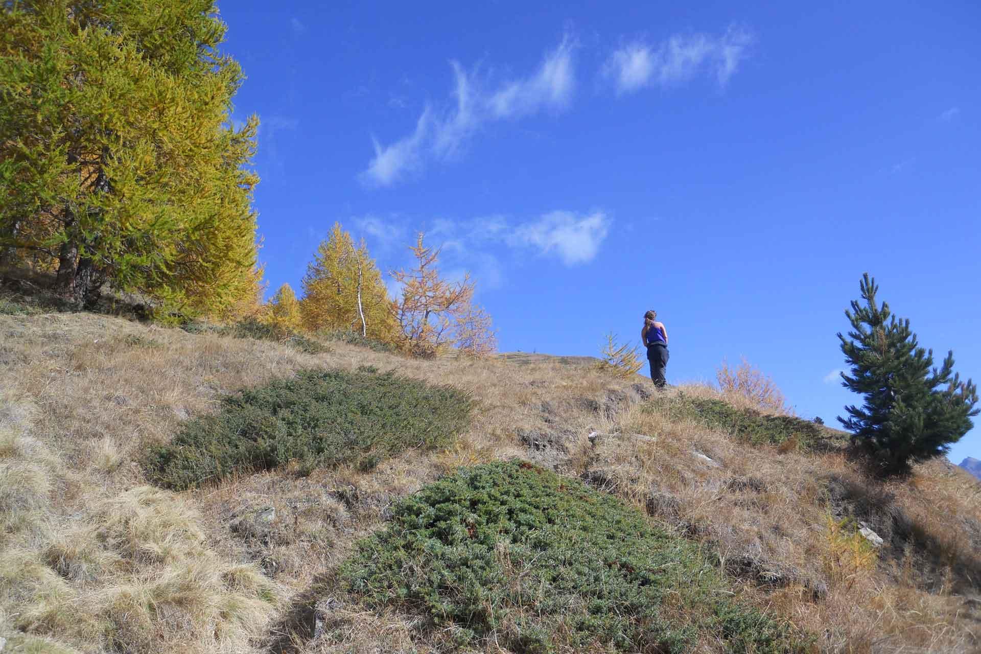 monviso_autunno_03