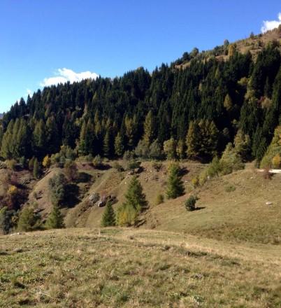 IMG-20151007-WA0026Rore – Passo Malaura