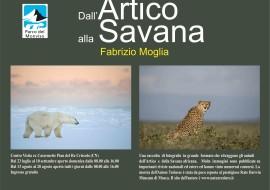 Dall'artico alla savana: uno sguardo sul mondo