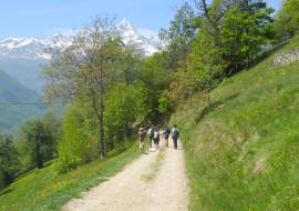 I gemelli Dematteis, campioni di corsa in montagna sfidano il Monviso
