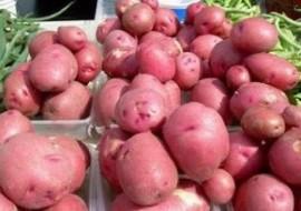 13^ sagra della patata e dei prodotti di montagna