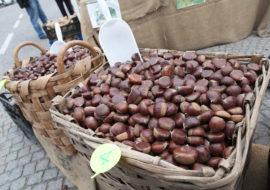 LA CASTAGNA – XXVIII ^ mostra mercato dei prodotti della Valle Varaita