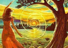 L'energia degli alberi e dei cristalli